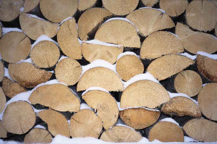 Lumber Futures Trading Find Out How Lumber is Traded – Lumber Broker